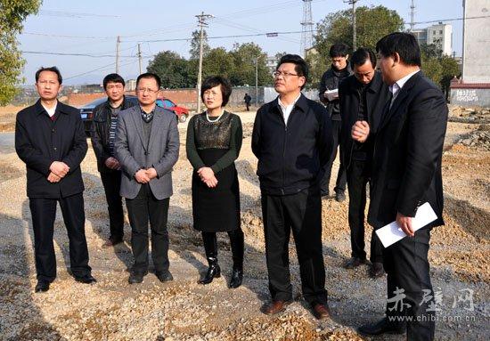 咸宁市委常委,市委秘书长夏亚灵,赤壁市委常委,宣传部长李满林,副市长